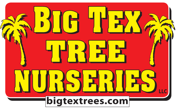 Big Tex Tree Nurseries