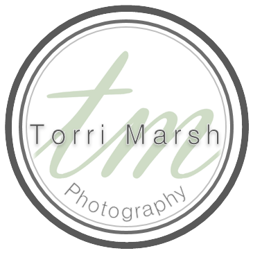 Torri Marsh Photography