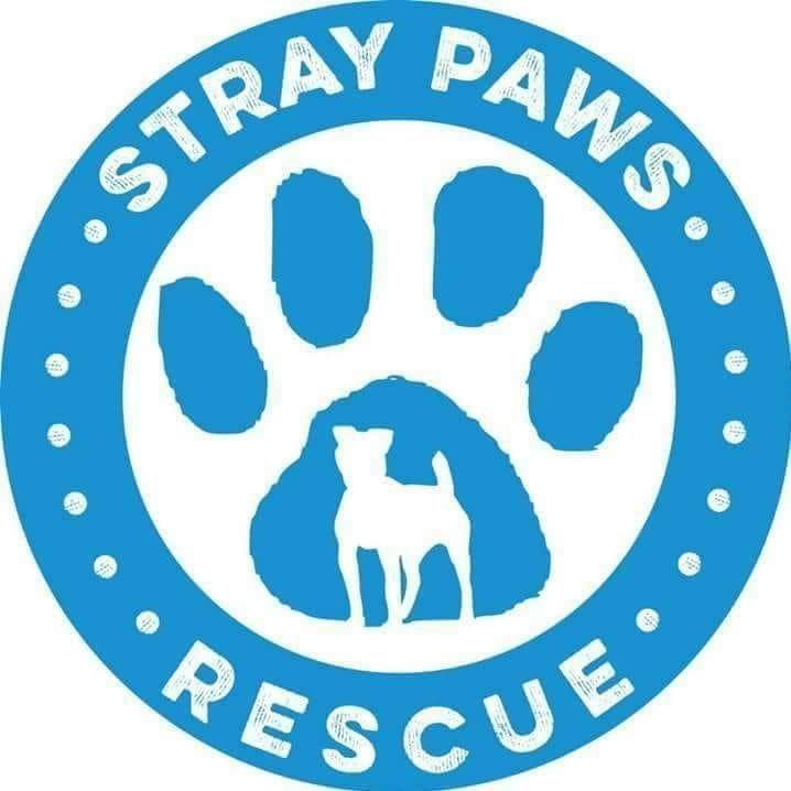 Stray Paws Rescue